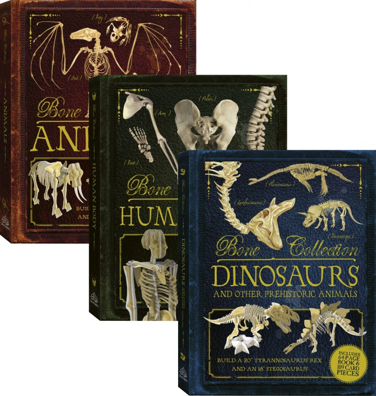 Bone Collection: Animals • Human Body • Dinosaurs